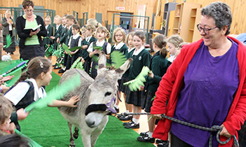 Marsden Primary students celebrate Palm Sunday with Tilly the Donkey
